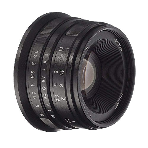 Fotga 25mm F1.8 handmatige fixfocus-objectief, handmatige focus-lens, groot diafragma, 68 graden kijkhoek, voor Panasonic Olympus Micro 4/3 camera E-PL5/6/7/8/9 E-M5 E-M10 PEN-F GX7 GX GH3 GH4 GH5 GH5sAPS-C (For Panasonic Olympus M4/3 camera, zwart)