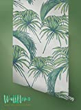 Papier peint Motif Tropical - Exotique amovible Papier peint papier peint Feuilles - Palm - Sticker mural - Motif Tropical Palm feuilles autocollant papier peint, 53 Cm wide by 121 Cm Tall