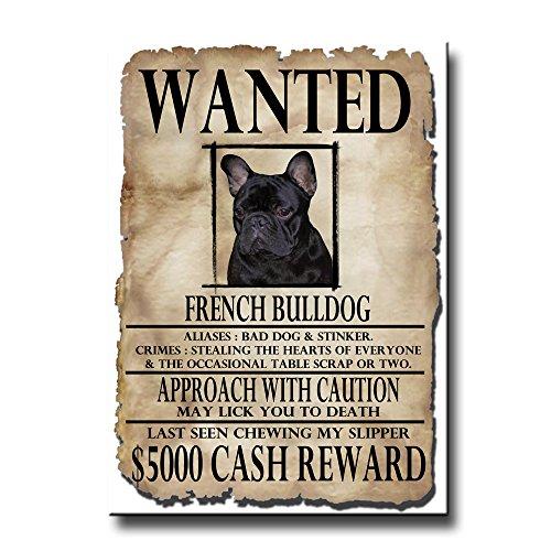 French Bulldog Wanted Fridge Magnet No 2 Funny