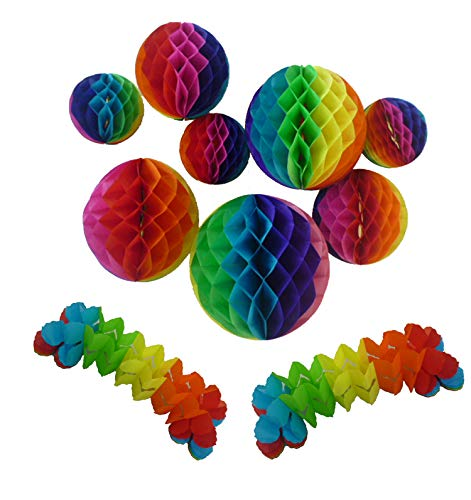 10pcs Paper Honeycomb Balls Party Decoration, Paper Garlands, Tissue Paper Pom Poms Flowers for Birthday,Wedding Hanging Decoration Supplies, Rainbow Colors