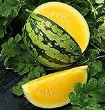 CEMEHA SEEDS Watermelon Yellow Rare Giant Fruit Heirloom Organic Non-GMO