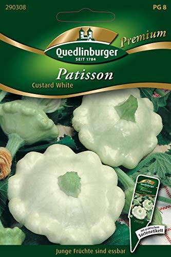 Patisson, Custard White, Cucurbita pepo L., ca. 20 Samen