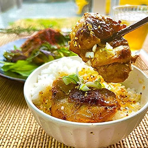 お取り寄せグルメ 人気 ご当地 お肉 ケバブ トルコの町串本町ふるさと納税人気 レンチン簡単調理 冷凍