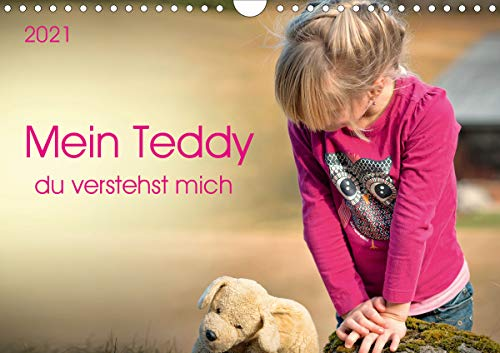 Mein Teddy - du verstehst mich (Wandkalender 2021 DIN A4 quer)