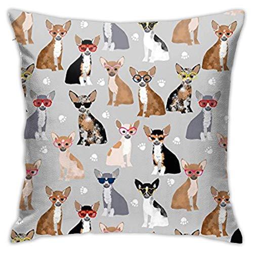 Chihuahua - Funda de almohada decorativa para gafas de perro, diseño cuadrado, 45,7 x 45,7 cm