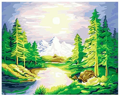 FGHJSF Pintura por números Sol y árboles Verdes Pintura al óleo de Bricolaje con Pinceles y Pinturas para Adultos Niños Pintura DIY Conjunto Completo de Pinturas para el Hogar -40x50 cm (Sin Marco)