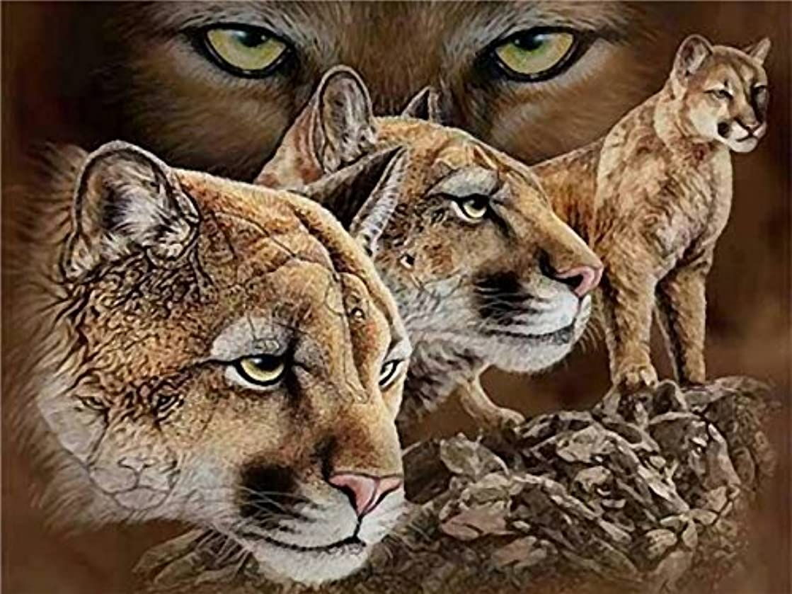 Cougar -5D Diamond Painting Needlework Mosaic DIY Cross Stitch Kit Embroidery for Bedroom Decor Gifts 12X16Inch