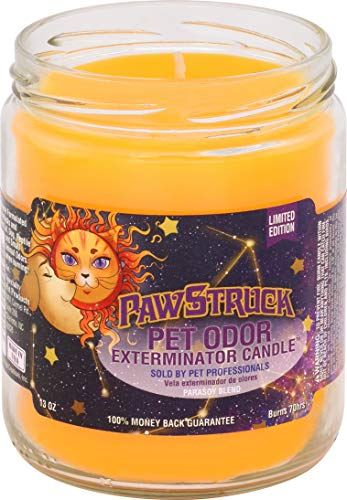 PawStruck Pet Odor Exterminator 13 Ounce Jar Candle