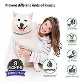 IMG-2 xinlintra repellenti per insetti gatti