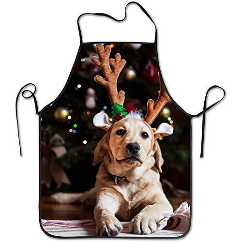 DSFA Neues Haustier für Weihnachten Schürze Küchenchef Kochen Kreative Lustige Grillen Backen 52 * 72 cm