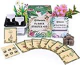 KORAM Flower Seeds Packet Starter Kit, Semilla de flores de primavera orgánica para el jardín de su casa con herramientas de siembra Set de siembra (10 paquetes individuales de semillas de variedades)