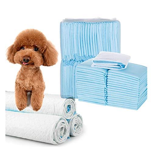 Empapadores Para Perros Dispositivo súper absorbente entrenamiento mascota pañales almohadilla desodorante antibacteriano entrenamiento cachorro mascota perro pis almohadillas suministros para perros