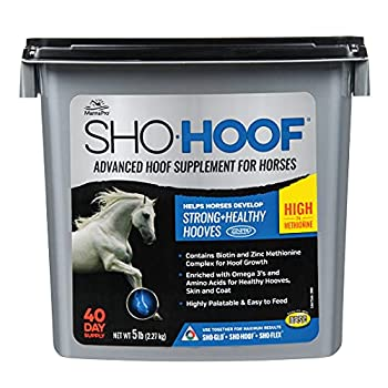 Manna Pro Sho-Hoof Supplement for Horses   Biotin and Zinc Methionine for Healthy Hooves   5 Pounds
