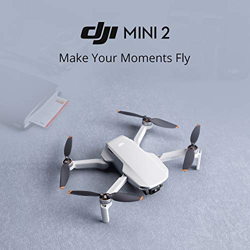 DJI Mini 2 Ultralight and Foldable Quadcopter Drone, Gray