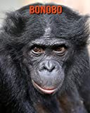 Bonobo: Erstaunliche Fakten & Bilder