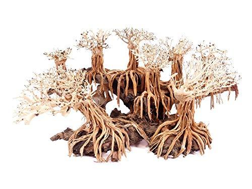Aquarium Wurzel Bonsai Exclusiv Größe L 60x30cm Nr.122 Holz Deko Aquascaping Bonsaibaum Dekoration Landschaft Moos Echtholz Natur