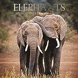 Calendario de pared 2021 - Calendario de los elefantes, 30 x 30 centímetros Mensual Vista, de 16 meses, tema de los animales, incluye 180 etiquetas en Inglés