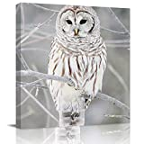 Big buy store Wall Art Canvas Owl Wild Winter Picture Framed Oil Painting for Living Room Bedroom Dinning Room Ready to Hang Home Decorations (Perch on Branches, 20x20 inch)
