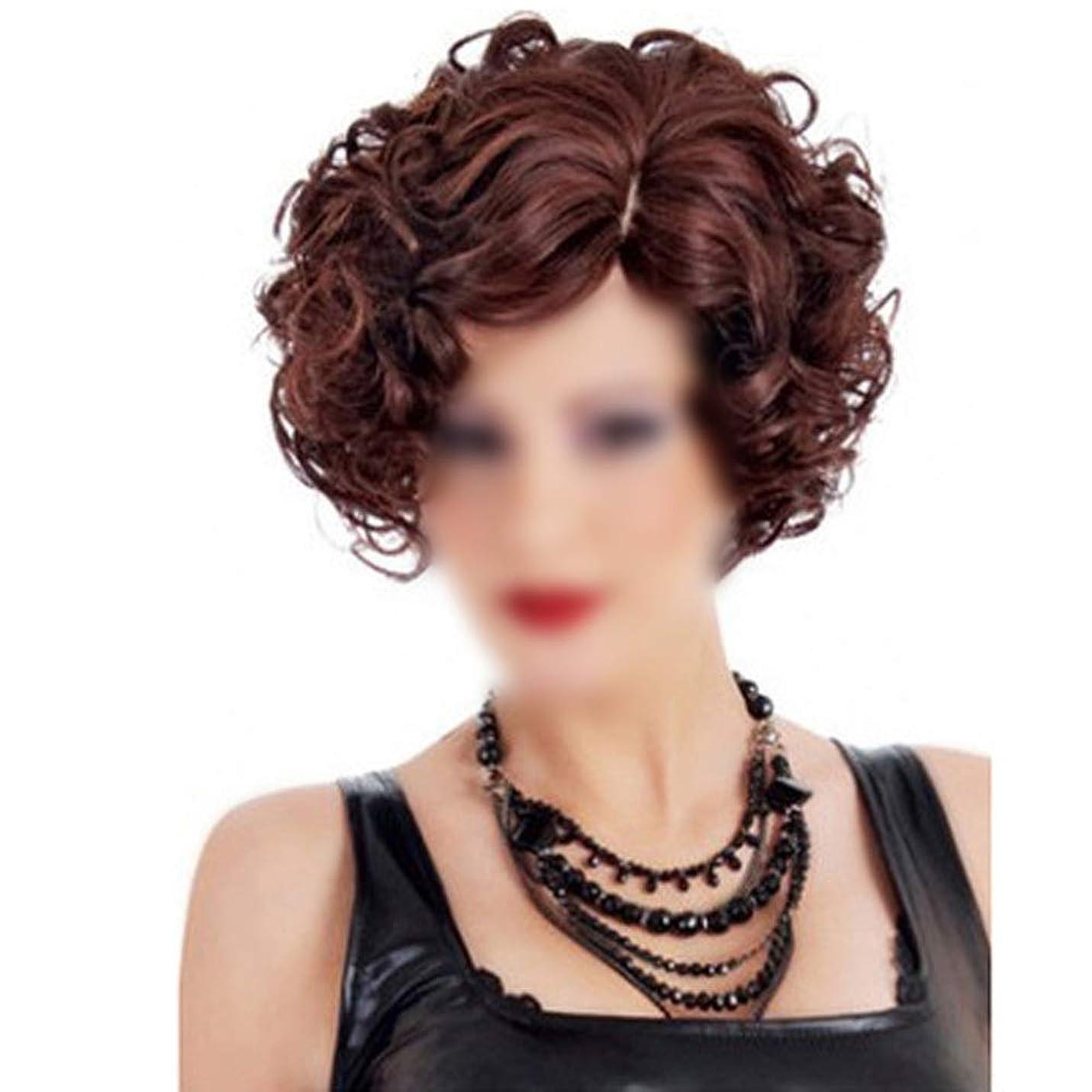 メジャー算術男やもめIsikawan マイクロウェーブのワインレッドの女性のローズネットかつら女性の短いストレートの髪 (色 : ワインレッド, サイズ : 30cm)