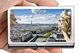 Porta biglietti da visita professionale, custodia per carta di credito/portamonete/portamonete Gargoyle Paris Notre Dame