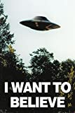 Poster The X-Files - I Want To Believe - preiswertes