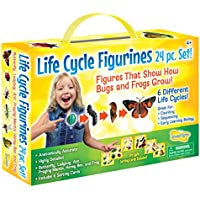 Insect Lore Life Cycle Figurines 24-Piece Set