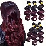 Ombre Bundles T1B/99J Ombre Human Hair 3 Bundles Black To Burgundy Dark Roots 100G/Pcs Body Wave Unprocessed Brazilian Virgin Human Hair Extensions Two Tone Sew In Weave Mixed Length(16 18 20Inch)