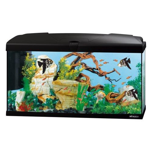 Ferplast 65018017Acuario Capri 80, Medidas: 80x 31,5x 46,5cm, 100litros, Color Negro