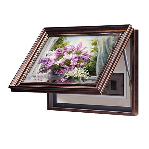 LITING Caja de Interruptor del medidor de Pintura Decorativa Caja Multimedia Caja Principal Puerta automática Caja de distribución de la Vivienda Sala (Size : Outer40*50CM)
