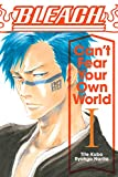 Bleach: Can't Fear Your Own World, Vol. 1 (English Edition)