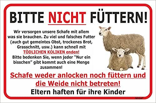 AdriLeo Schild Schafe Nicht füttern 15x20, 20x30, 30x40 oder 40x60cm Weide betreten verboten (20 x 30cm)