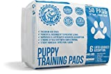 Bulldogology Premium Puppy Pee Pads with Adhesive Sticky Tape (24x24) Large Dog Training Wee Pads with 6 Layer Extra Quick Dry Bullsorbent Polymer Tech (50-Count, White)