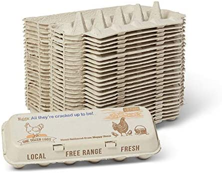 Eco Friendly Paper Egg Carton 25 One Dozen Cartons Room for Personalization Compostable Healthy product image