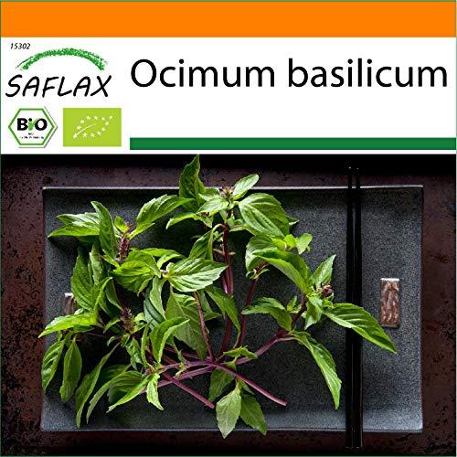 SAFLAX - Jardin dans le sac - BIO - Basilic - Thaï - 250 graines - Avec substrat de culture dans un sac de levage facile à manipuler. - Ocimum basilicum