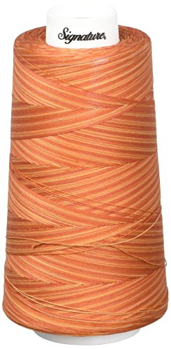 Amazing Deal Signature 3 Ply Cotton Quilting Thread, 40wt/3000 yd, Variegated Rusty Oranges