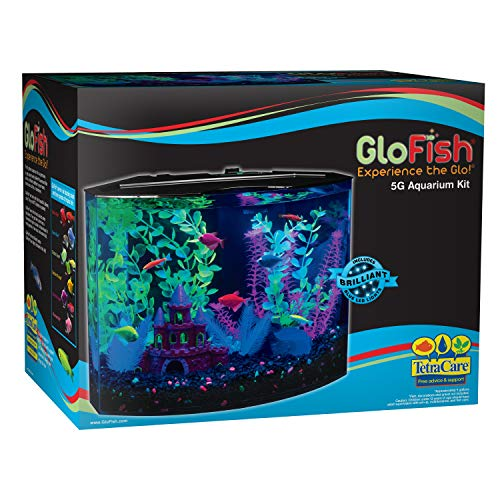 GloFish Crescent Aquarium Kit 5 Gallons, Includes Hidden Blue LED Light And Internal Filter