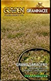 Franchi Grano SARACENO da Semina in Confezione da 100 Grammi