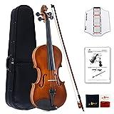 Aileen Geige Kinder 4/4, Violine Lernen Anfänger Set für Erwachsene mit Exklusive patentierte Griffbrettaufkleber