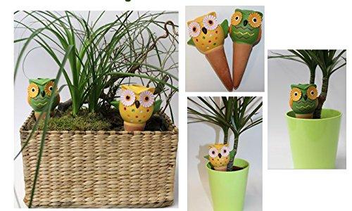 Bewässerung Kugel Eule 2er Set Pflanzen Wasser gießfrei automatisches Gießen für Topfpflanzen