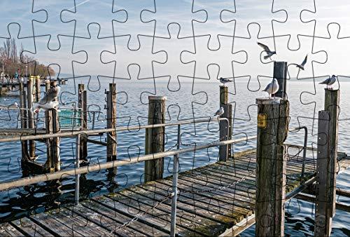 Puzzlepostkarte Bodensee 1: Motiv Möwen am Steg (Kultur erleben im GMEINER-Verlag)