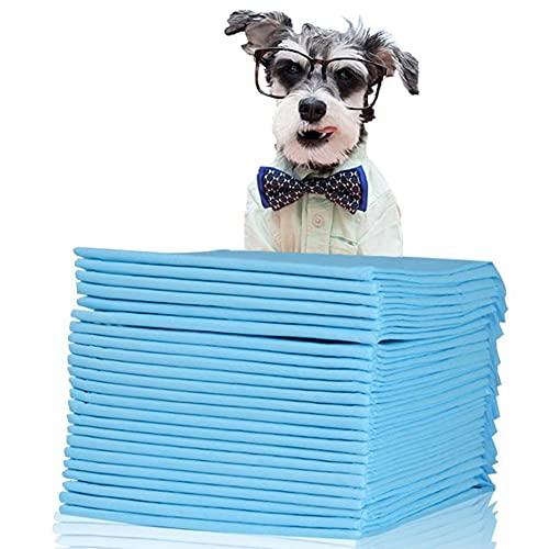 Toallitas de Entrenamiento para Mascotas Superabsorbente 5 Capas Protege Las Alfombras De Los Suelos Laminados del Olor,S