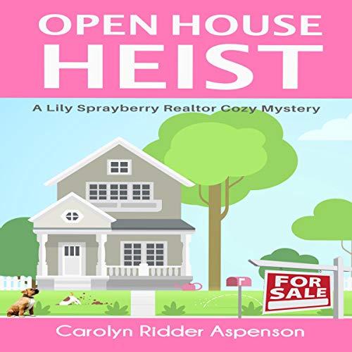 Open House Heist Titelbild