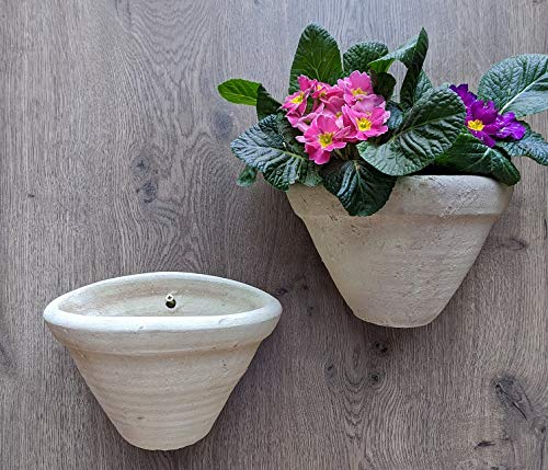 2 Stück Wandamphoren Blumentopf echt Terrakotta ca. 23 cm, Blumenkübel für Garten und Wohnung Terracotta Liegeamphore ........... kein Kunststoff, Blumen