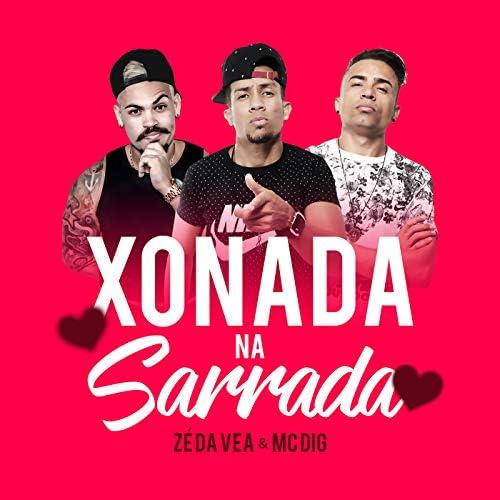 MC Dig feat. Zé da Vea