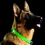 Pet Industries Metal Buckle LED Dog Collar, USB Rechargeable, Available in 7 Colors & 4 Sizes (Small [12.5-16.5' / 32-42 cm], Atomic Green)