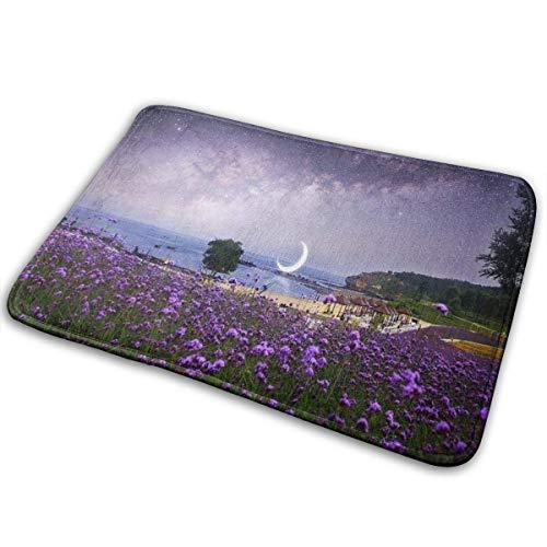 AEMAPE Alfombrillas de Puerta de 40x60 cm con Respaldo de Goma Antideslizante Alfombra de Bienvenida al Aire Libre Felpudo Interior Dalian Delight Island romántico crepúsculo púrpura