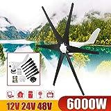 LiRongPing 6000W 12V/24V/48V Wind Turbine+Controller Black 6 Blades Generator Horizontal Power Windmill Energy