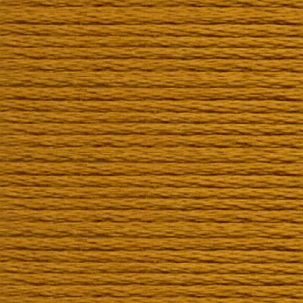 Anchor Six Strand Embroidery Floss 8.75 Yards-Brass Medium 12 per Box