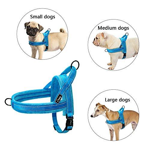 Didog - Arnés para perro acolchado de franela suave, a prueba de escape/ajuste rápido, correa reflectante para perro, fácil para entrenamiento de caminata
