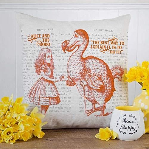 EricauBird Funda de cojín cuadrada para decoración del hogar con diseño de chica en el país de las maravillas Alicia y el Dodo